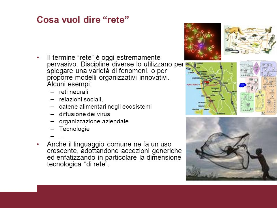 Continenti del web (Broder): nucleo centrale, in, out, isole