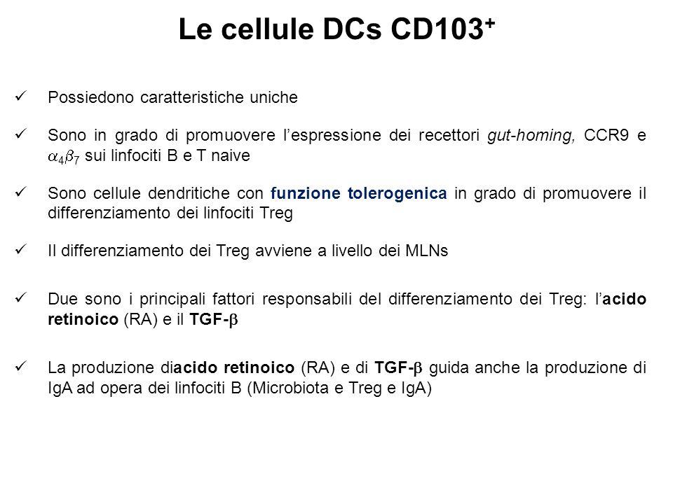 Le cellule DCs CD103 + Possiedono caratteristiche uniche Sono in grado di promuovere l'espressione dei recettori gut-homing, CCR9 e  4  7 sui linfociti B e T naive Sono cellule dendritiche con funzione tolerogenica in grado di promuovere il differenziamento dei linfociti Treg Il differenziamento dei Treg avviene a livello dei MLNs Due sono i principali fattori responsabili del differenziamento dei Treg: l'acido retinoico (RA) e il TGF-  La produzione diacido retinoico (RA) e di TGF-  guida anche la produzione di IgA ad opera dei linfociti B (Microbiota e Treg e IgA)