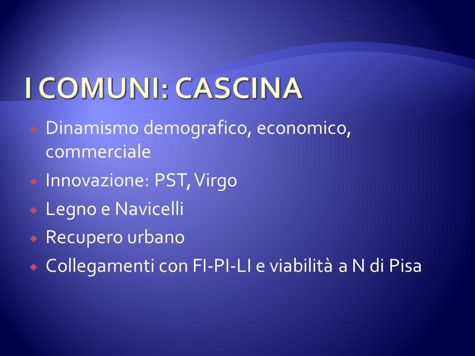  Dinamismo demografico, economico, commerciale  Innovazione: PST, Virgo  Legno e Navicelli  Recupero urbano  Collegamenti con FI-PI-LI e viabilità a N di Pisa
