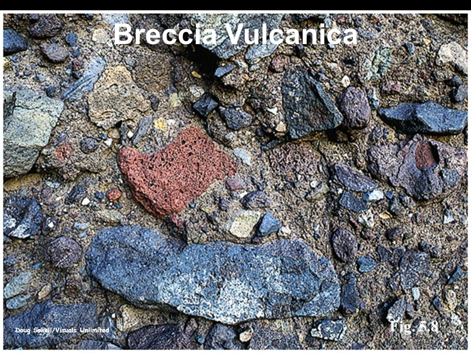 Doug Sokell/Visuals Unlimited Fig. 5.8 Breccia Vulcanica