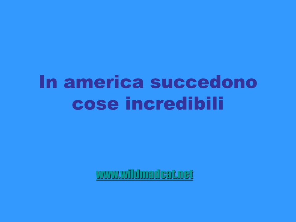 In america succedono cose incredibili www.wildmadcat.net