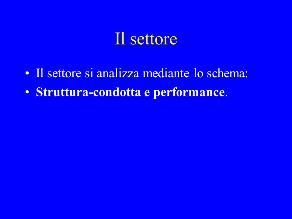 Il settore Il settore si analizza mediante lo schema: Struttura-condotta e performance.