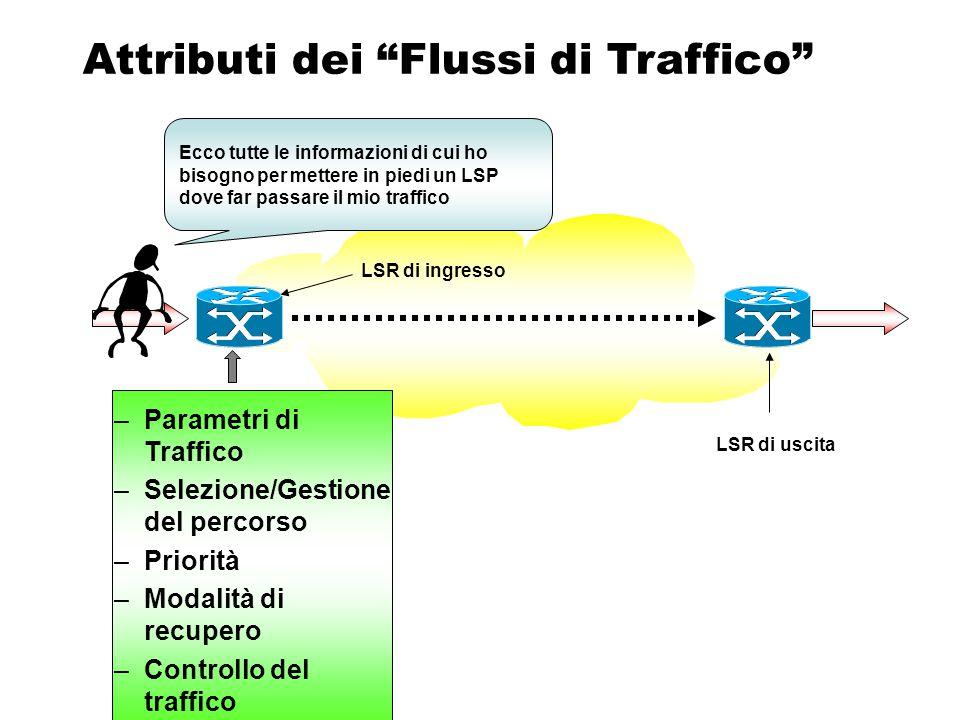 RFC 2702 Ogni router dovrebbe essere in grado di: –Realizzare un Tunnel IT –Iniziare l'invio di un flusso sul Tunnel –Bloccare il flusso su un Tunne –