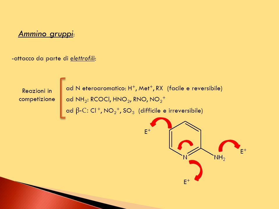 Ammino gruppi : -attacco da parte di elettrofili: ad N eteroaromatico: H +, Met +, RX (facile e reversibile) ad NH 2 : RCOCl, HNO 2, RNO, NO 2 + ad β-