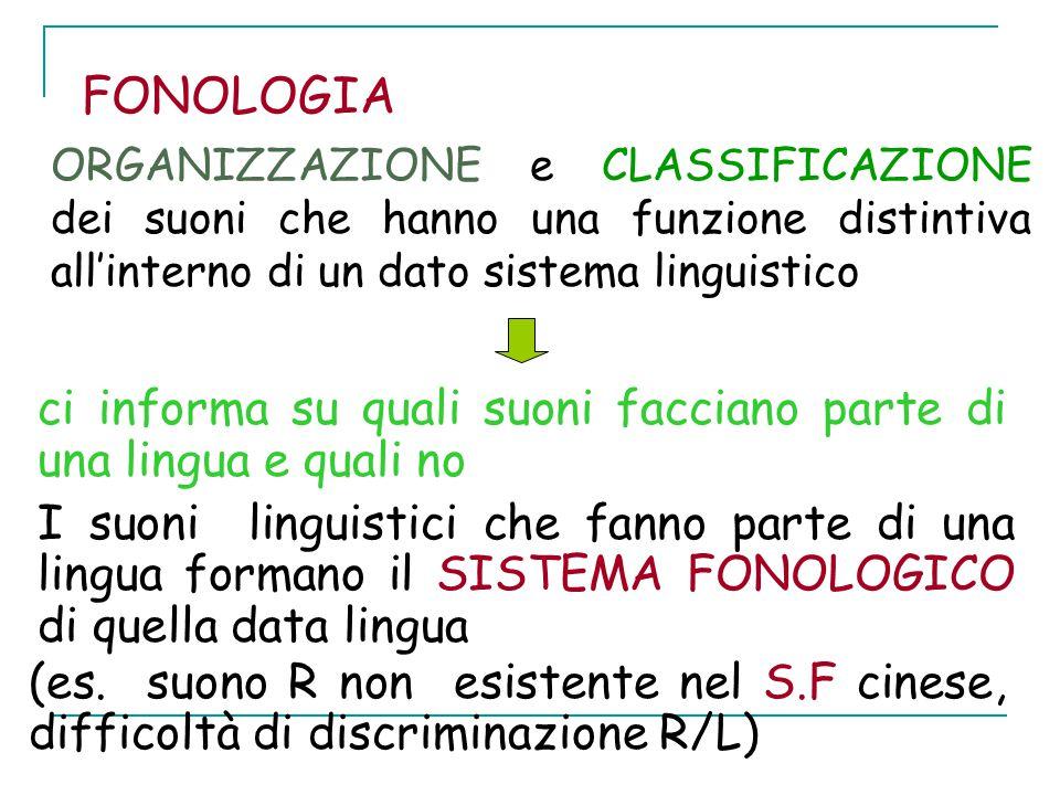 FONOLOGIA ORGANIZZAZIONE e CLASSIFICAZIONE dei suoni che hanno una funzione distintiva all'interno di un dato sistema linguistico ci informa su quali suoni facciano parte di una lingua e quali no I suoni linguistici che fanno parte di una lingua formano il SISTEMA FONOLOGICO di quella data lingua (es.
