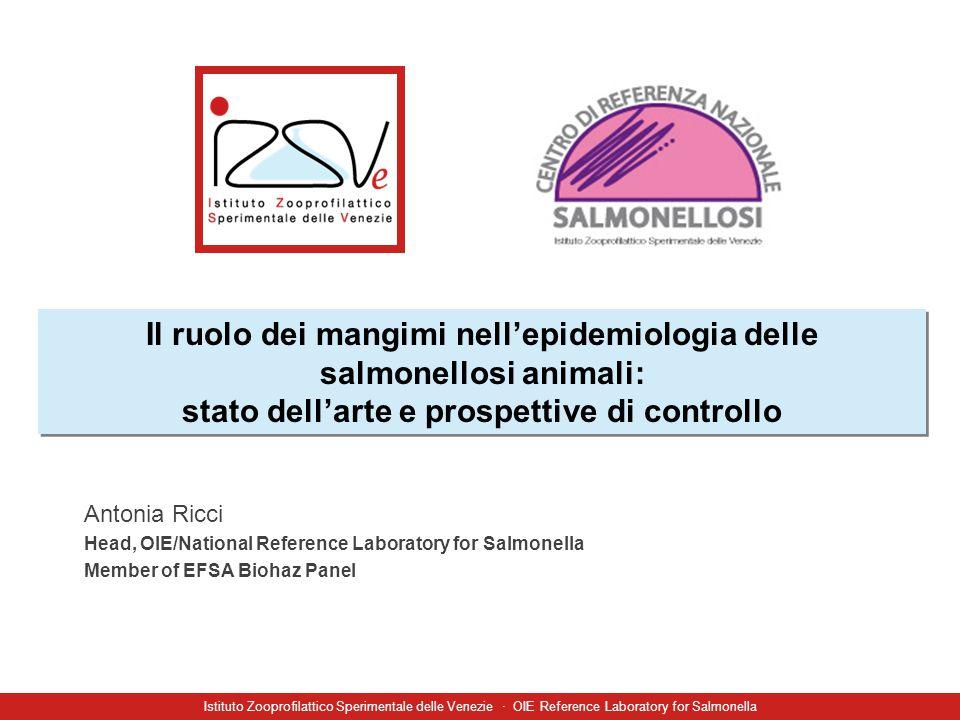 A. Ricci (IZSVe) Istituto Zooprofilattico Sperimentale delle Venezie · OIE Reference Laboratory for Salmonella Il ruolo dei mangimi nell'epidemiologia