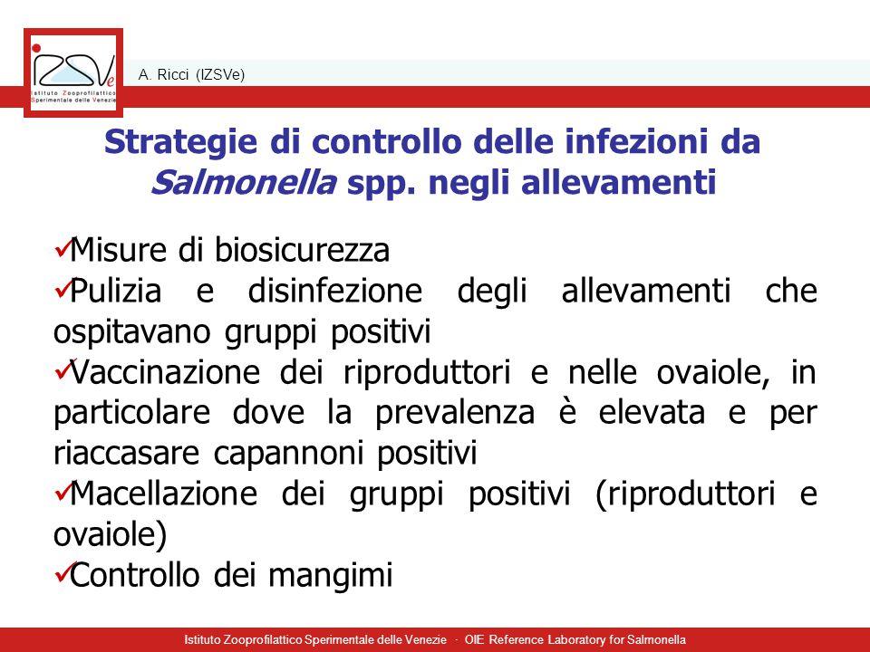 A. Ricci (IZSVe) Istituto Zooprofilattico Sperimentale delle Venezie · OIE Reference Laboratory for Salmonella Strategie di controllo delle infezioni