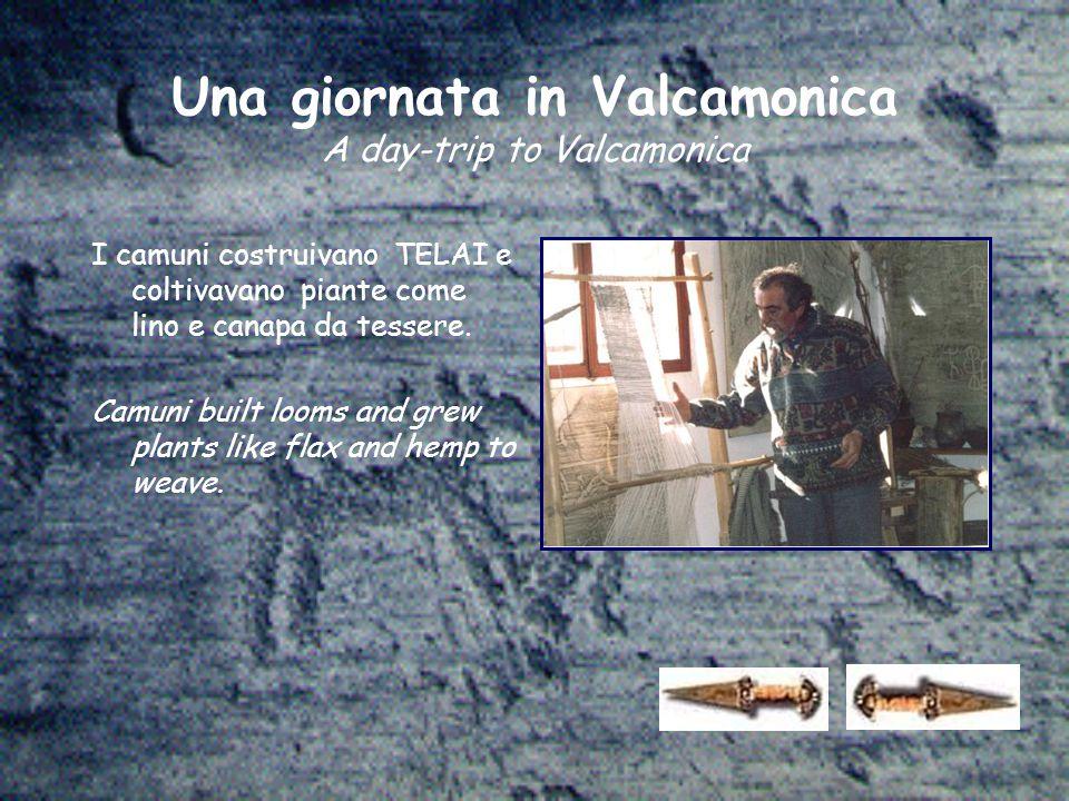Una giornata in Valcamonica A day-trip to Valcamonica I camuni costruivano TELAI e coltivavano piante come lino e canapa da tessere. Camuni built loom