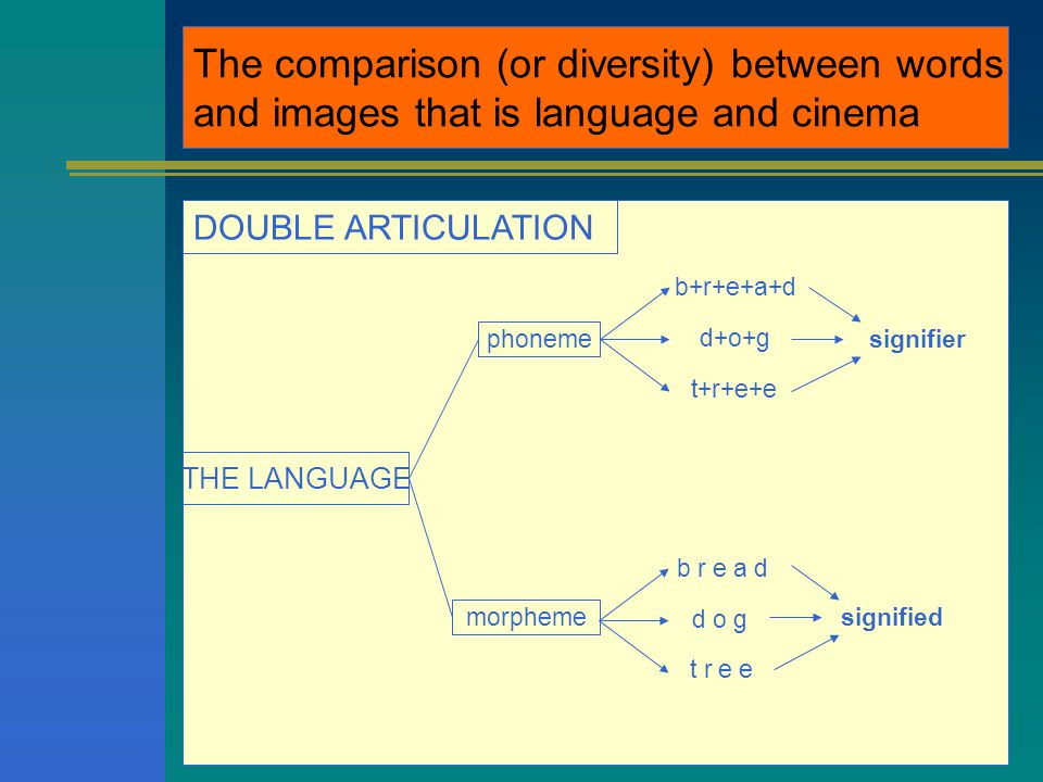 The comparison (or diversity) between words and images that is language and cinema DOUBLE ARTICULATION THE LANGUAGE phoneme morpheme b+r+e+a+d d+o+g t+r+e+e b r e a d d o g t r e e signifier signified