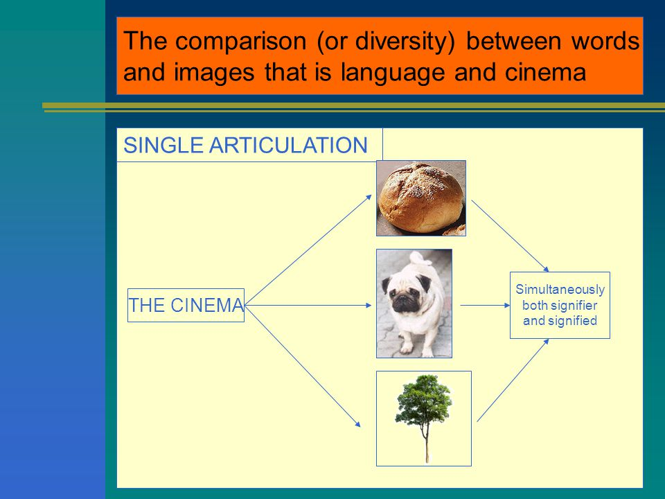 The comparison (or diversity) between words and images that is language and cinema SINGLE ARTICULATION THE CINEMA Simultaneously both signifier and signified