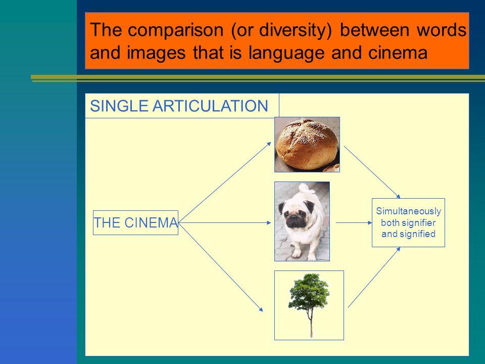 Rapporto (o diversità ) tra parola e immagine, cioè tra lingua e cinema ARTICOLAZIONE DOPPIA LA LINGUA fonemi morfemi p+a+n+e c+a+n+e a+l+b+e+r+o p a n e c a n e a l b e r o significante significato