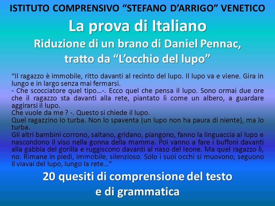 """La prova di Italiano Riduzione di un brano di Daniel Pennac, tratto da """"L'occhio del lupo"""" """"Il ragazzo è immobile, ritto davanti al recinto del lupo."""