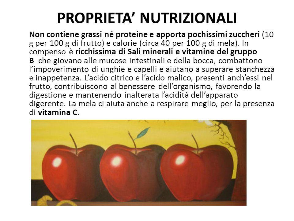 PROPRIETA' NUTRIZIONALI Non contiene grassi né proteine e apporta pochissimi zuccheri (10 g per 100 g di frutto) e calorie (circa 40 per 100 g di mela