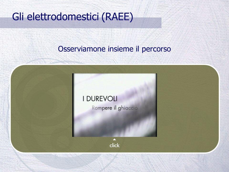 Gli elettrodomestici Dall'aprile 2008 i produttori dei RAEE devono farsi carico dello smaltimento.