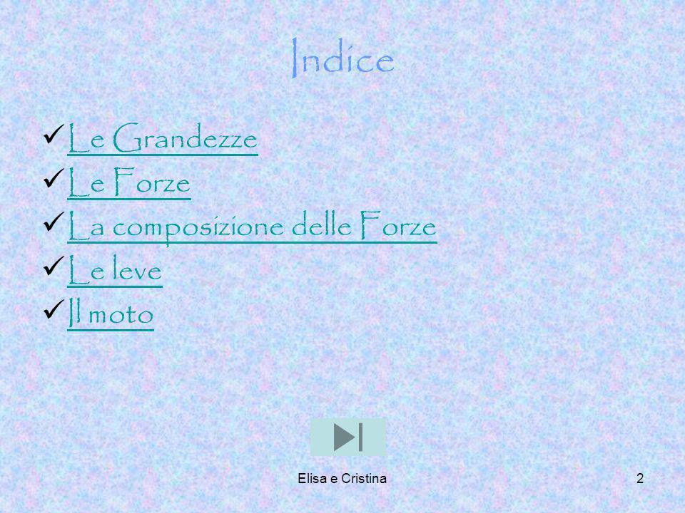 Elisa e Cristina13 Caso 1: le forze hanno la stessa direzione, lo stesso verso e la stesso punto di applicazione.