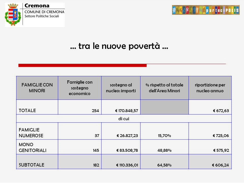 … tra le nuove povertà … FAMIGLIE CON MINORI Famiglie con sostegno economico sostegno al nucleo: importi % rispetto al totale dell Area Minori ripartizione per nucleo annuo TOTALE254€ 170.848,57 € 672,63 di cui FAMIGLIE NUMEROSE37€ 26.827,2315,70%€ 725,06 MONO GENITORIALI145€ 83.508,7848,88%€ 575,92 SUBTOTALE182€ 110.336,0164,58%€ 606,24