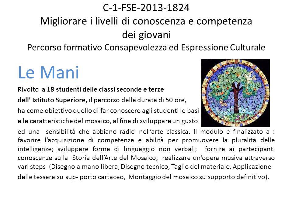 C-1-FSE-2013-1824 Migliorare i livelli di conoscenza e competenza dei giovani Percorso formativo Consapevolezza ed Espressione Culturale Le Mani Rivol