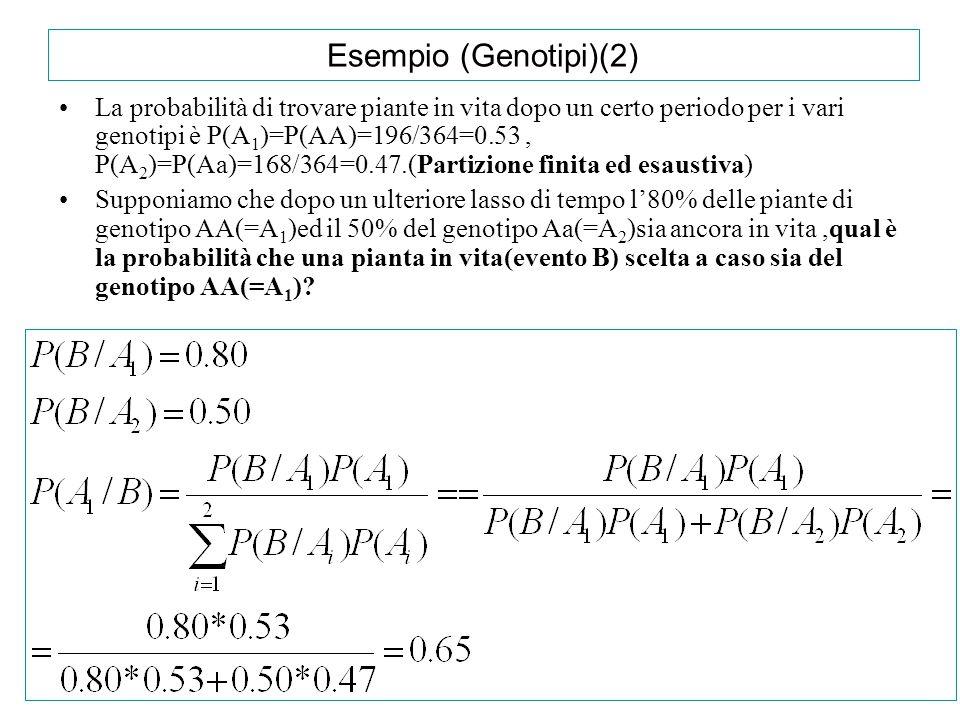 Esempio (Genotipi)(2) La probabilità di trovare piante in vita dopo un certo periodo per i vari genotipi è P(A 1 )=P(AA)=196/364=0.53, P(A 2 )=P(Aa)=1