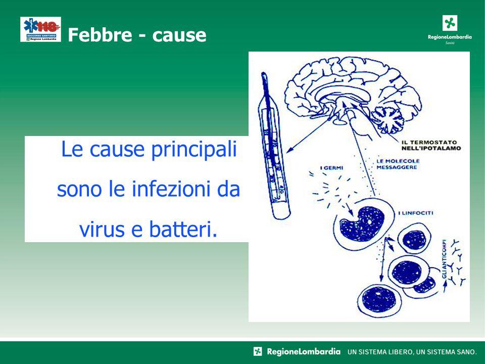 Le cause principali sono le infezioni da virus e batteri. Febbre - cause