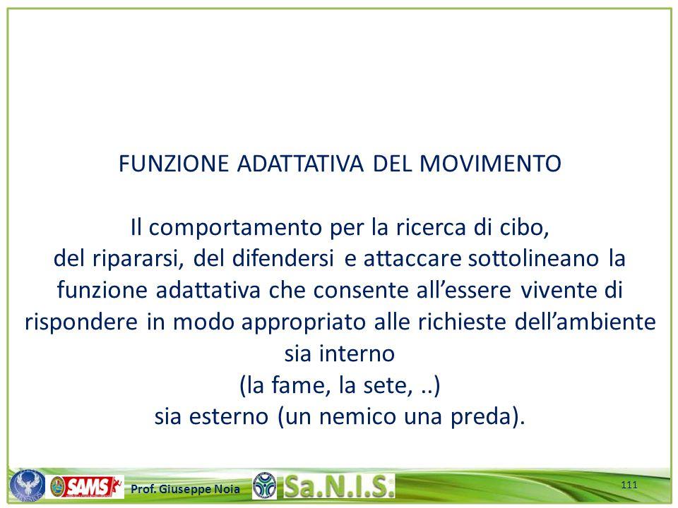 \\\\\\\\\\\\\\\\\\\\\\\\\\\\\\\\\\\\\\\\\\\\\\\\\\\\ Prof. Giuseppe Noia FUNZIONE ADATTATIVA DEL MOVIMENTO Il comportamento per la ricerca di cibo, de