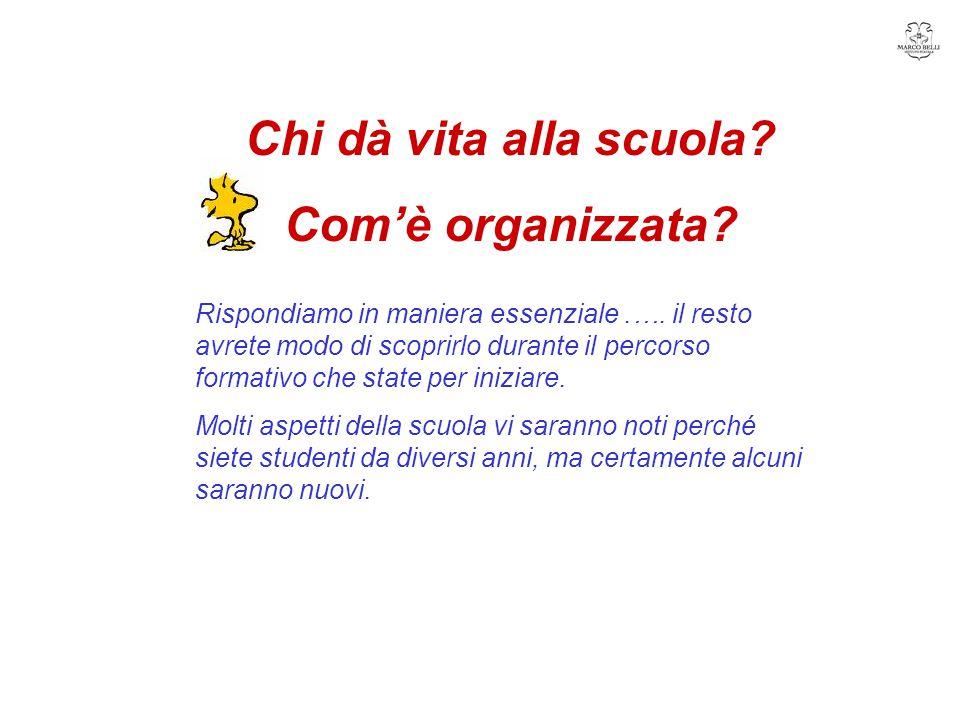 Organigramma … rappresentazione grafica delle funzioni degli organi di un' azienda con riferimento alla loro gerarchia.