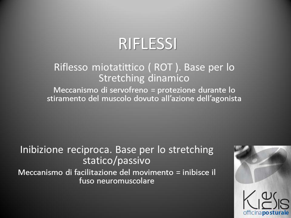 RIFLESSI Riflesso miotatittico ( ROT ). Base per lo Stretching dinamico Meccanismo di servofreno = protezione durante lo stiramento del muscolo dovuto