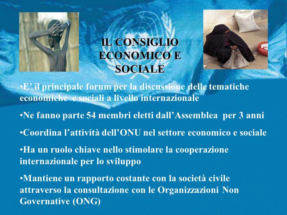 IL CONSIGLIO ECONOMICO E SOCIALE E' il principale forum per la discussione delle tematiche economiche e sociali a livello internazionale Ne fanno part