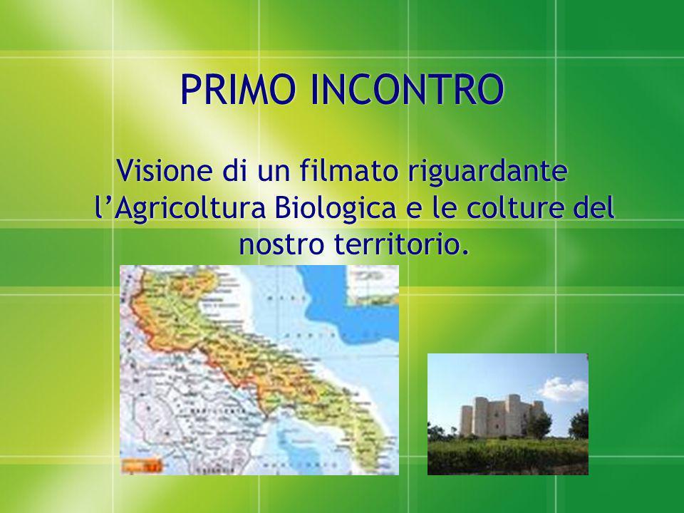 PRIMO INCONTRO PRIMO INCONTRO Visione di un filmato riguardante l'Agricoltura Biologica e le colture del nostro territorio. Visione di un filmato rigu