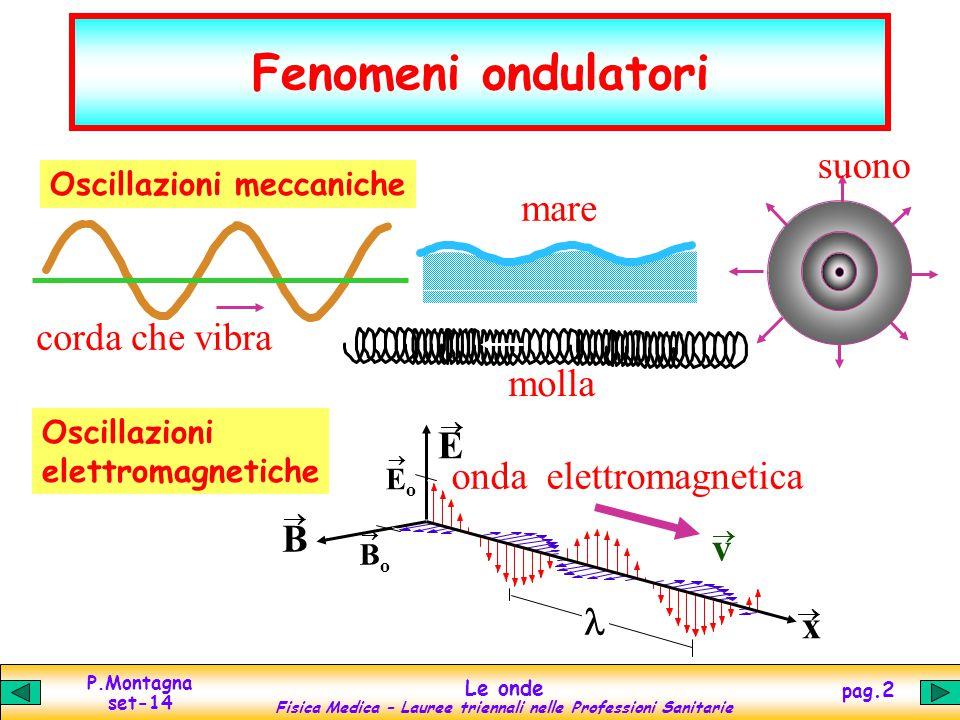 P.Montagna set-14 Le onde Fisica Medica – Lauree triennali nelle Professioni Sanitarie pag.2 Fenomeni ondulatori mare suono corda che vibra molla Osci