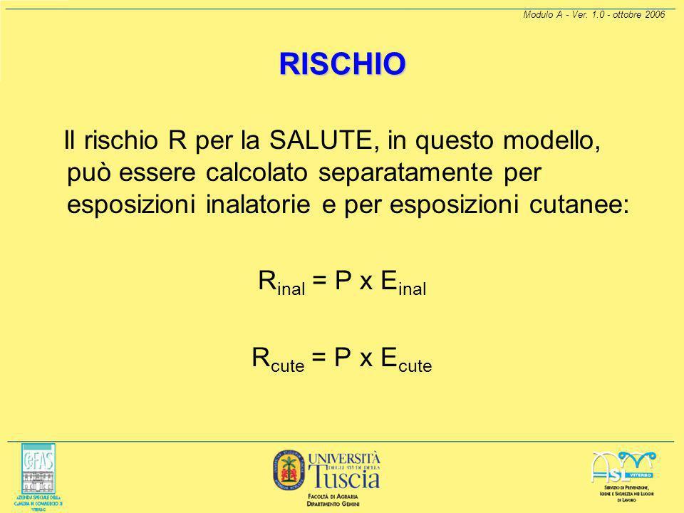 Modulo A - Ver. 1.0 - ottobre 2006 RISCHIO Per l'esposizione E si sono presi in considerazione: tipo durata dell'esposizione le modalità con cui avvie