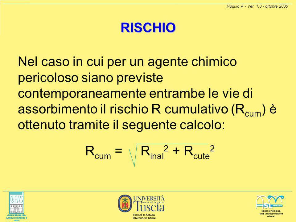 Modulo A - Ver. 1.0 - ottobre 2006 RISCHIO Il rischio R per la SALUTE, in questo modello, può essere calcolato separatamente per esposizioni inalatori