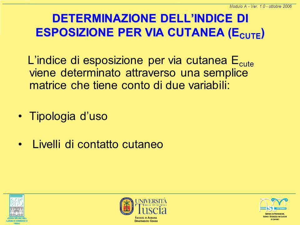 Modulo A - Ver. 1.0 - ottobre 2006 Schema per la determinazione dell'indice di esposizione per via inalatoria (E inal )