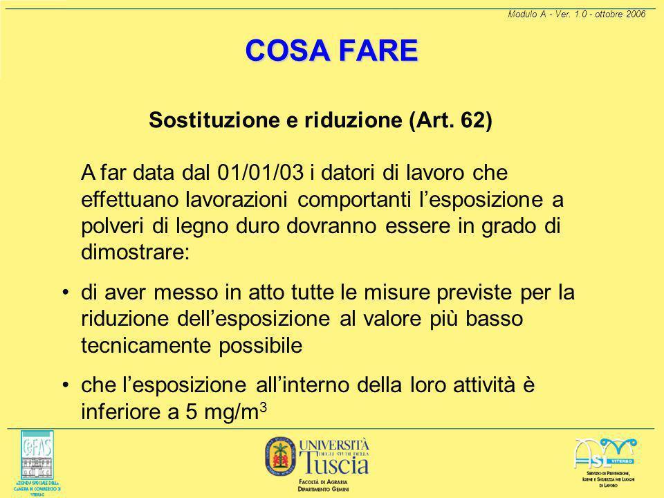 Modulo A - Ver. 1.0 - ottobre 2006 COSA FARE Sostituzione e riduzione (Art. 62)  Non essendo ipotizzabili sostituzioni del legno, avendo difficoltà n