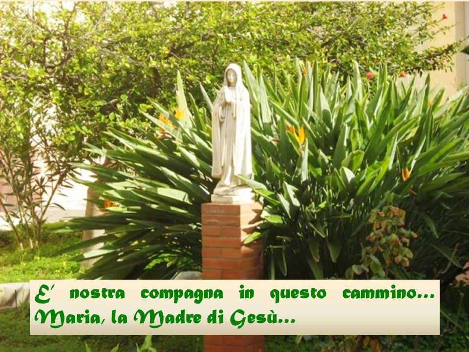 E' nostra compagna in questo cammino… Maria, la Madre di Gesù E' nostra compagna in questo cammino… Maria, la Madre di Gesù…