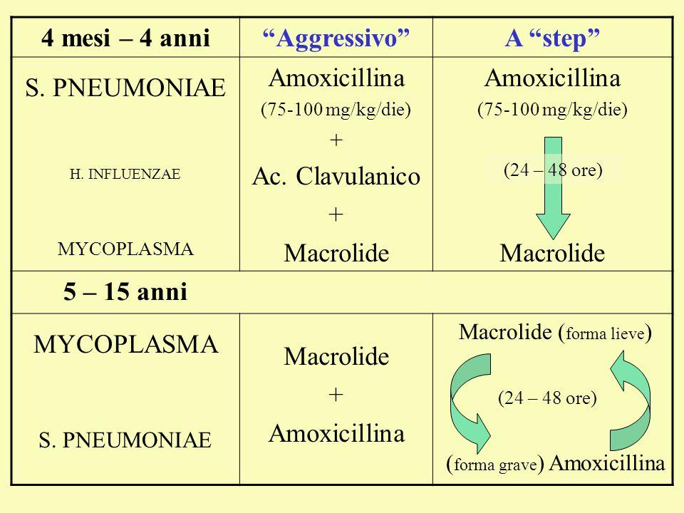 "Macrolide ( forma lieve ) ( forma grave ) Amoxicillina 4 mesi – 4 anni""Aggressivo""A ""step"" S. PNEUMONIAE H. INFLUENZAE MYCOPLASMA Amoxicillina (75-100"