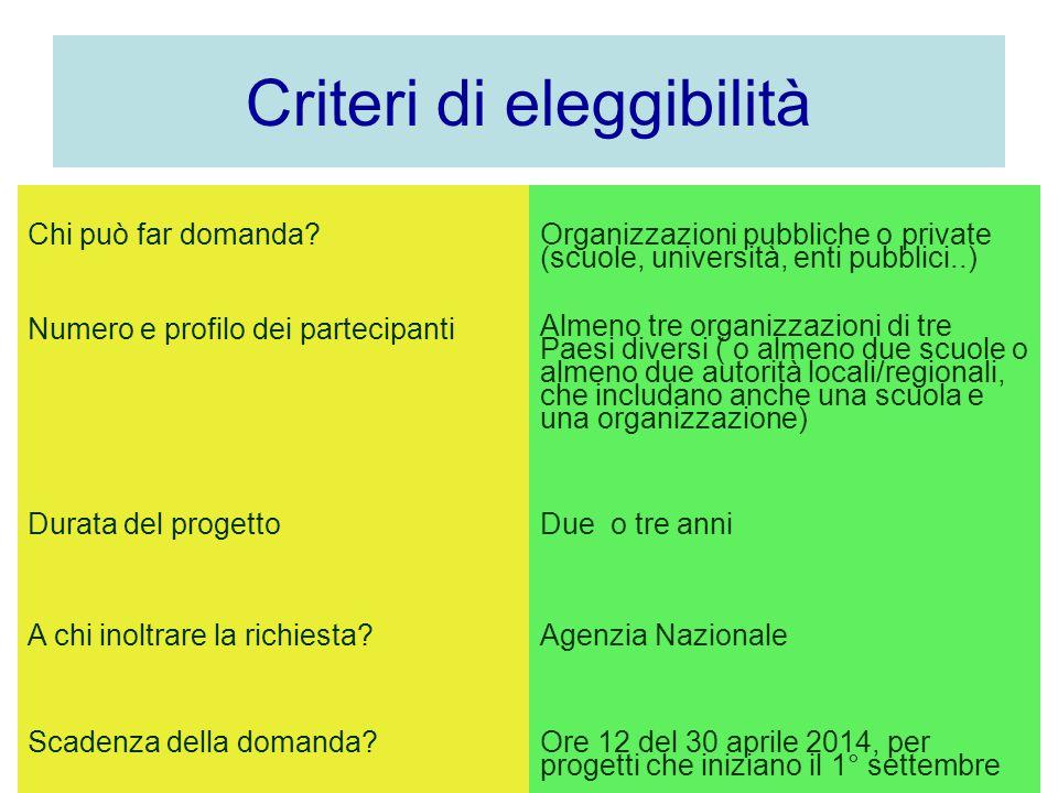 Criteri di eleggibilità Chi può far domanda? Organizzazioni pubbliche o private (scuole, università, enti pubblici..) Numero e profilo dei partecipant