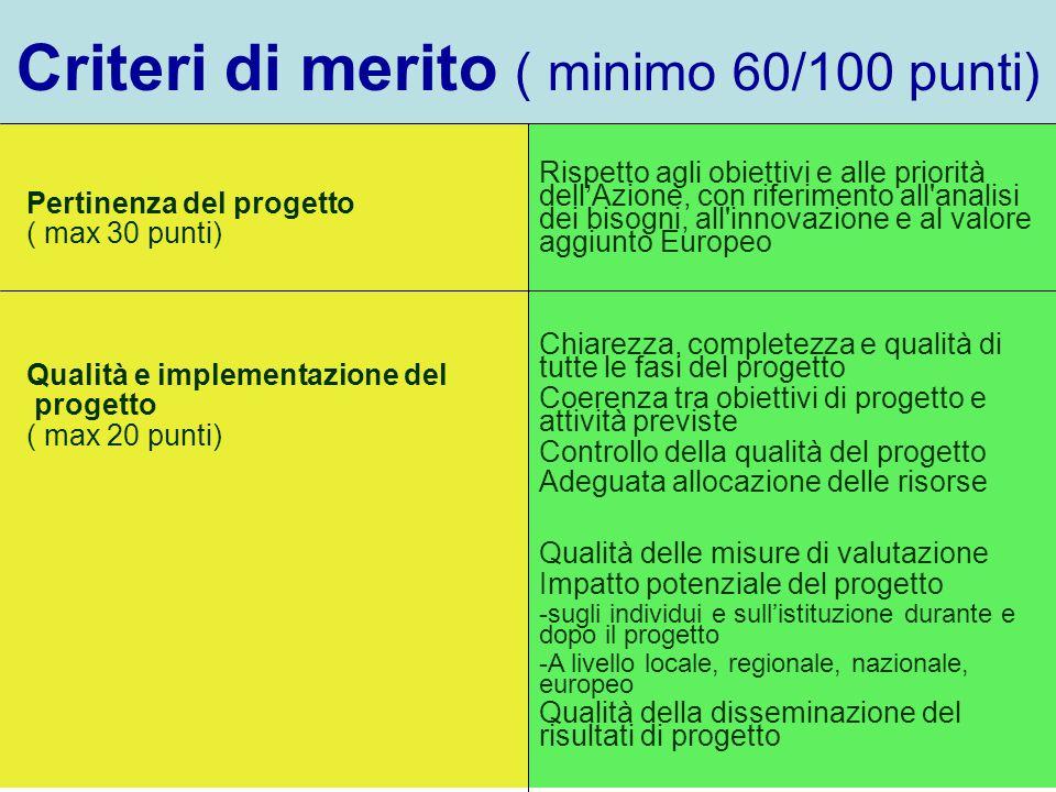 Criteri di merito ( minimo 60/100 punti) Pertinenza del progetto ( max 30 punti) Rispetto agli obiettivi e alle priorità dell'Azione, con riferimento