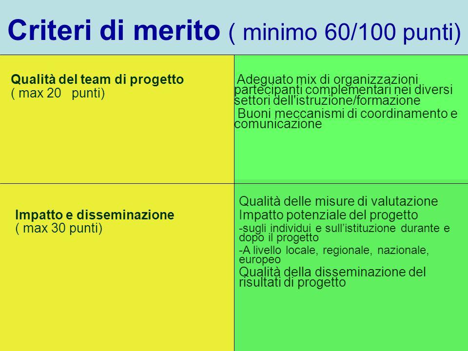 Criteri di merito ( minimo 60/100 punti) Qualità del team di progetto ( max 20 punti) Adeguato mix di organizzazioni partecipanti complementari nei di