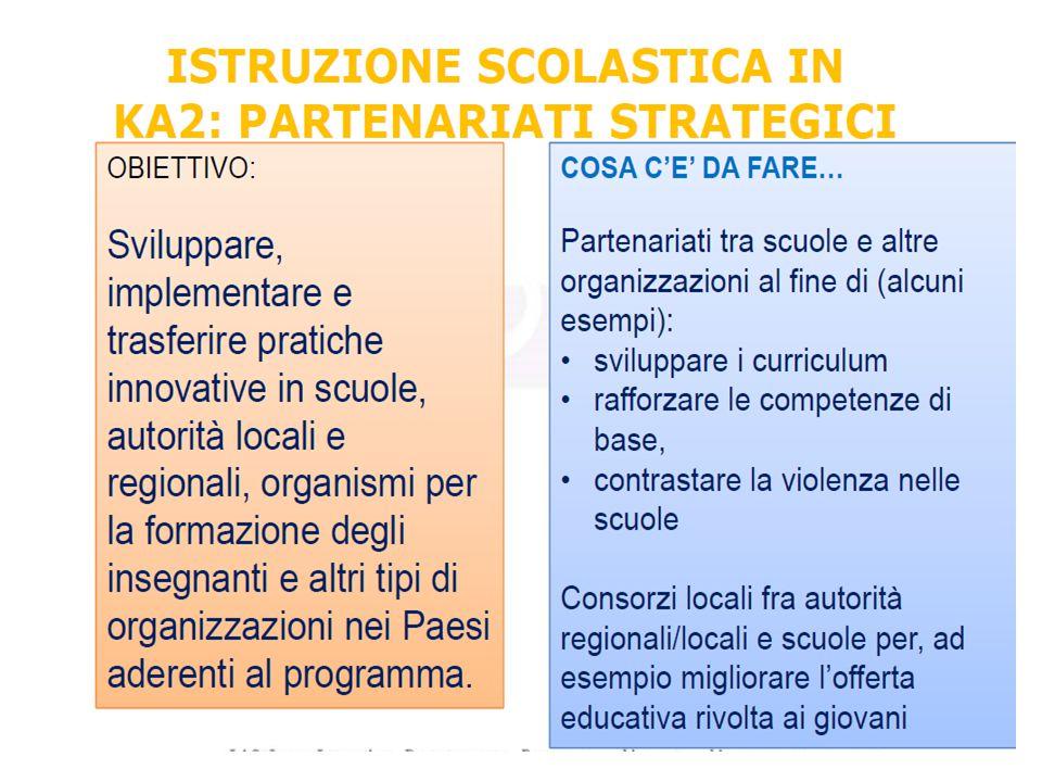 Finalità: Sviluppo, trasferimento, implementazione di pratiche innovative a livello dell organizzazione, locale, regionale, nazionale o Europeo Partenariati strategici
