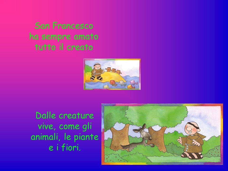 San Francesco ha sempre amato tutto il creato Dalle creature vive, come gli animali, le piante e i fiori.