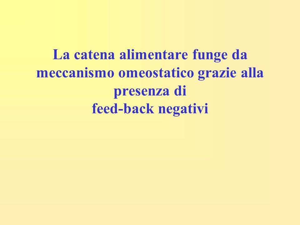 La catena alimentare funge da meccanismo omeostatico grazie alla presenza di feed-back negativi