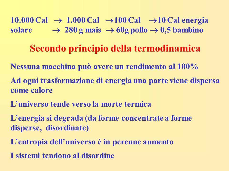 10.000 Cal  1.000 Cal  100 Cal  10 Cal energia solare  280 g mais  60g pollo  0,5 bambino Secondo principio della termodinamica Nessuna macchina