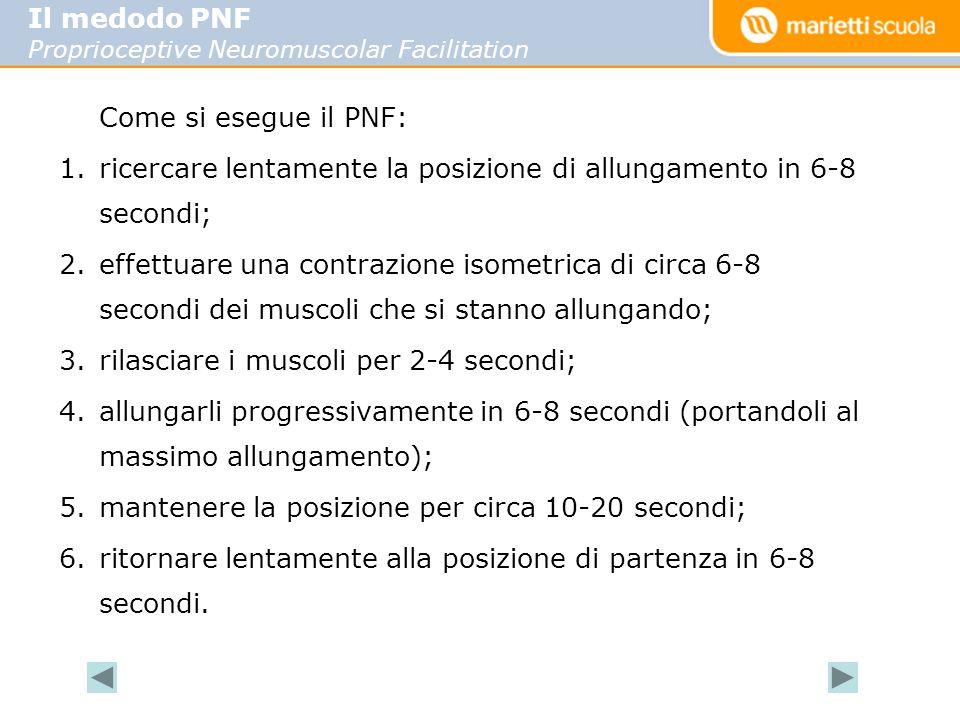 Come si esegue il PNF: 1.ricercare lentamente la posizione di allungamento in 6-8 secondi; 2.effettuare una contrazione isometrica di circa 6-8 secondi dei muscoli che si stanno allungando; 3.rilasciare i muscoli per 2-4 secondi; 4.allungarli progressivamente in 6-8 secondi (portandoli al massimo allungamento); 5.mantenere la posizione per circa 10-20 secondi; 6.ritornare lentamente alla posizione di partenza in 6-8 secondi.