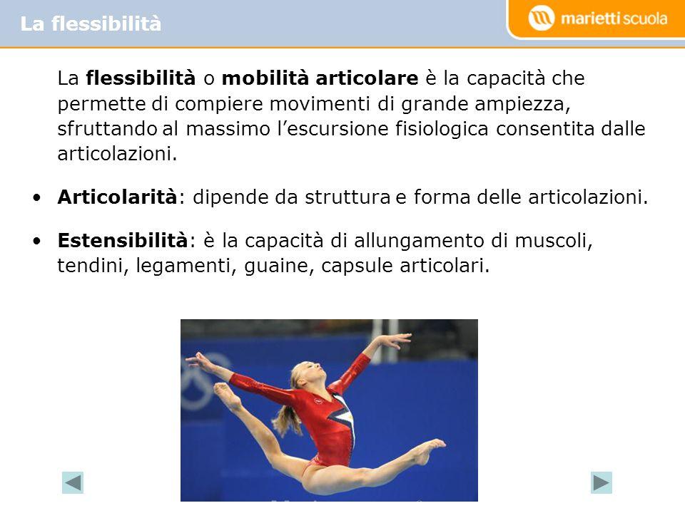 La flessibilità o mobilità articolare è la capacità che permette di compiere movimenti di grande ampiezza, sfruttando al massimo l'escursione fisiologica consentita dalle articolazioni.