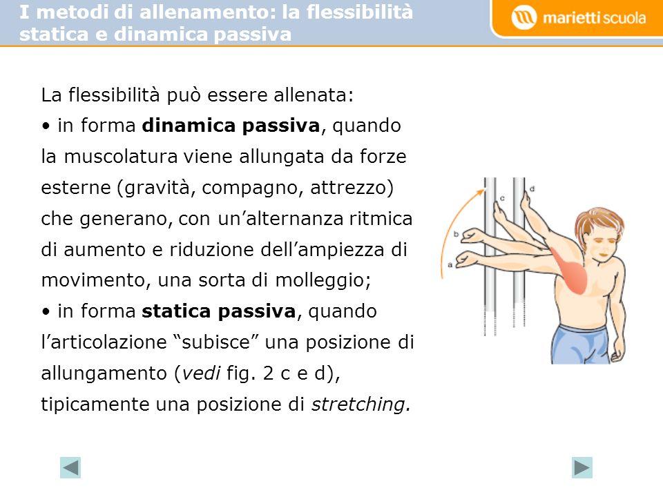 I metodi di allenamento: la flessibilità statica e dinamica passiva La flessibilità può essere allenata: in forma dinamica passiva, quando la muscolatura viene allungata da forze esterne (gravità, compagno, attrezzo) che generano, con un'alternanza ritmica di aumento e riduzione dell'ampiezza di movimento, una sorta di molleggio; in forma statica passiva, quando l'articolazione subisce una posizione di allungamento (vedi fig.