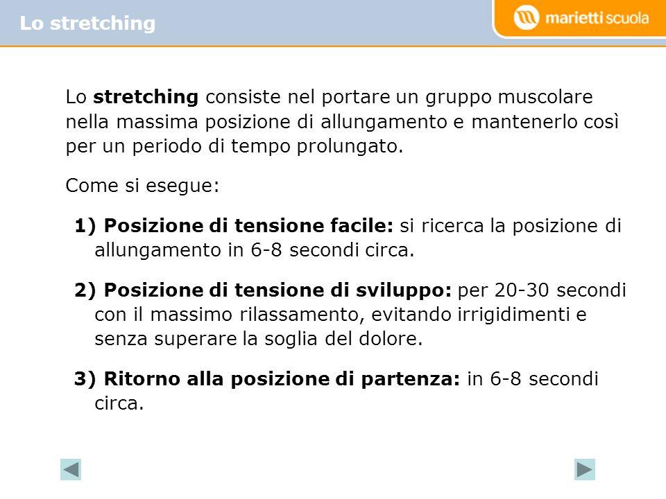 Lo stretching consiste nel portare un gruppo muscolare nella massima posizione di allungamento e mantenerlo così per un periodo di tempo prolungato.