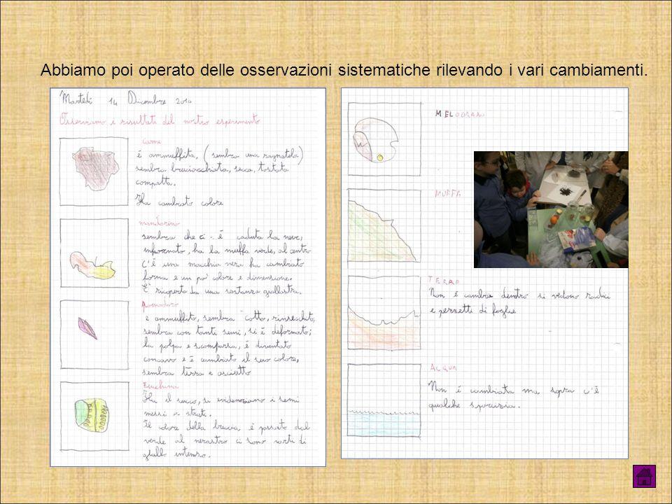 Nella prima fase abbiamo accolto ogni ipotesi ed abbiamo predisposto un possibile esperimento per validare o confutare le varie idee.