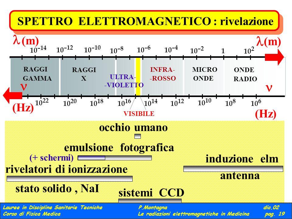 ONDE RADIO MICRO ONDE INFRA- -ROSSO VISIBILE ULTRA- -VIOLETTO RAGGI X GAMMA 10 2 1 10 –2 10 –4 10 –6 10 –8 10 –10 10 –12 10 –14 (m) (m) (Hz) (Hz) 10 6 10 8 10 10 12 10 14 10 16 10 18 10 20 10 22 SPETTRO ELETTROMAGNETICO : rivelazione induzione elm antenna emulsione fotografica (+ schermi) occhio umano sistemi CCD rivelatori di ionizzazione stato solido, NaI Lauree in Discipline Sanitarie Tecniche P.Montagna dic.02 Corso di Fisica Medica Le radiazioni elettromagnetiche in Medicina pag.