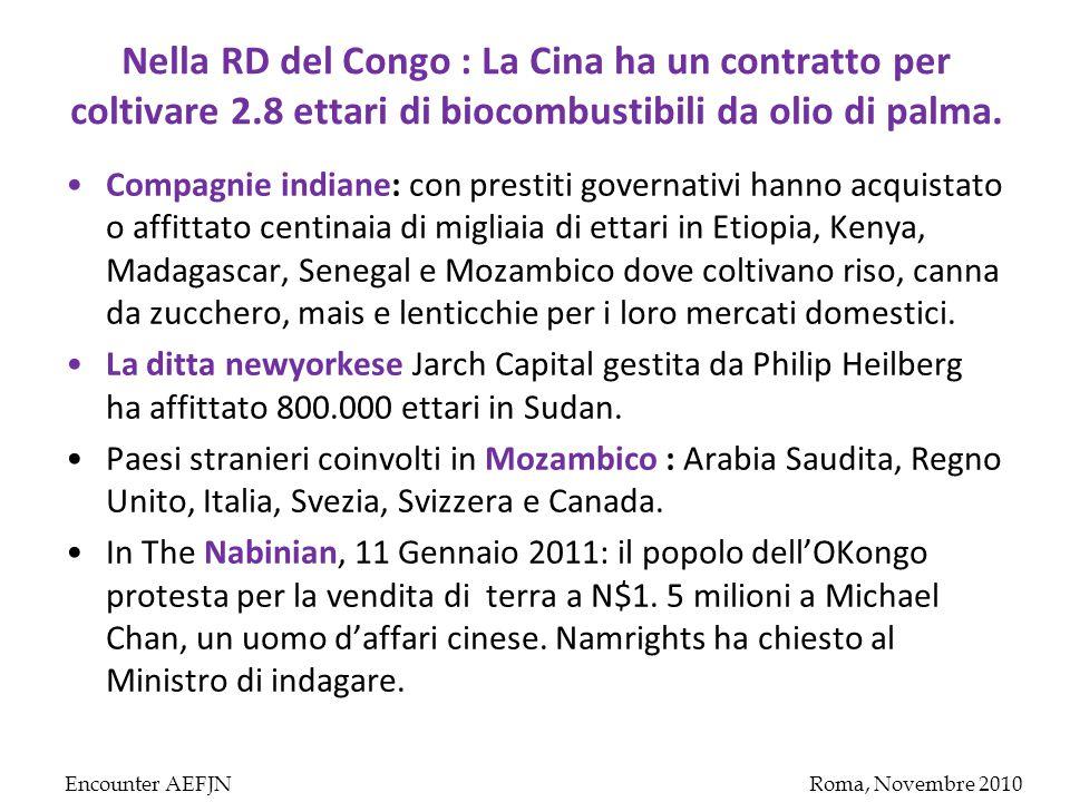 Nella RD del Congo : La Cina ha un contratto per coltivare 2.8 ettari di biocombustibili da olio di palma.