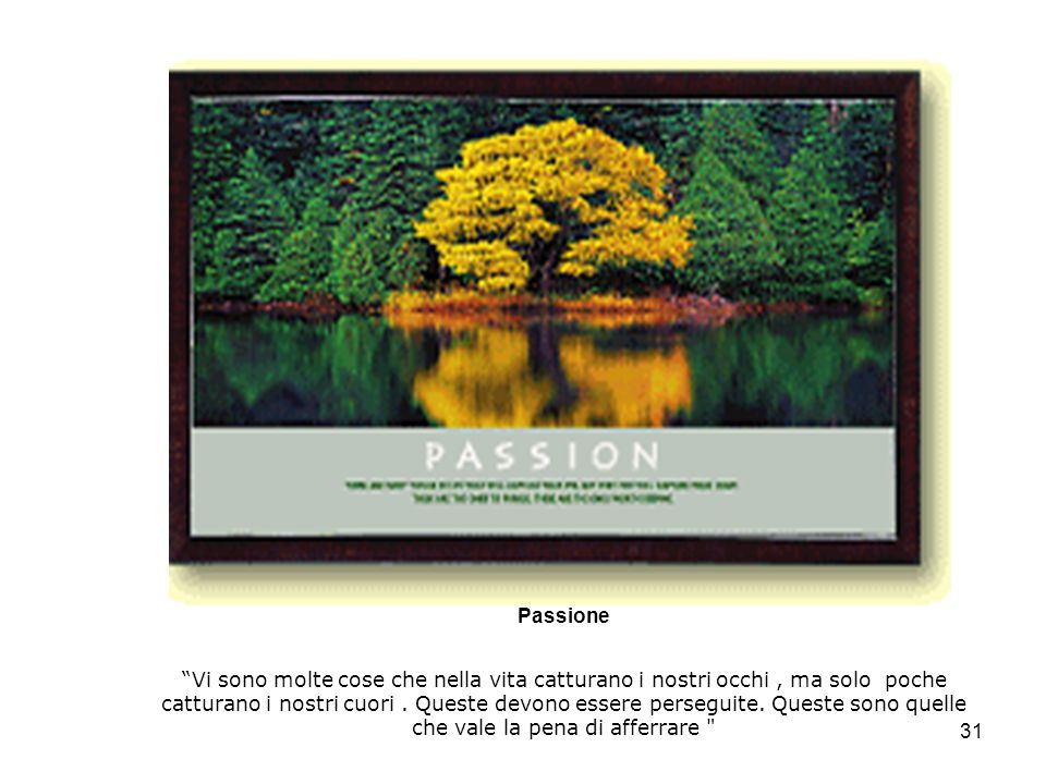 31 Passione Vi sono molte cose che nella vita catturano i nostri occhi, ma solo poche catturano i nostri cuori.
